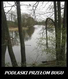 Zdjęcie do zakładki Galerie Podlaski Przełom Bgu